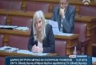 Ελένη Αυλωνίτου, Επιτροπή Αμυνας Βουλής στις 13/7/2016