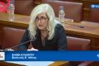 Ελένη Αυλωνίτου, Επιτροπή Αμυνας Βουλής στις 26/1/2017