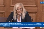 Ελένη Αυλωνίτου, Επιτροπή Μορφωτικών Βουλής στις 4/4/2017