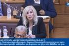 Ελένη Αυλωνίτου, Επιτροπή Μορφωτικών Βουλής στις 30/5/2017