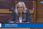 Ελένη Αυλωνίτου, Επιτροπή Έρευνας Βουλής στις 19/7/2017