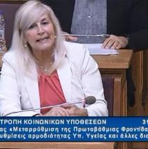 Ελένη Αυλωνίτου, Επιτροπή Κοινωνικών Υποθέσεων στις 31/7/2017