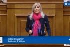 Ελένη Αυλωνίτου, ομιλία στη Βουλή στις 29/11/2017