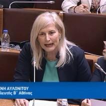 Ελένη Αυλωνίτου, Επιτροπή Άμυνας Βουλής στις 2/4/2018
